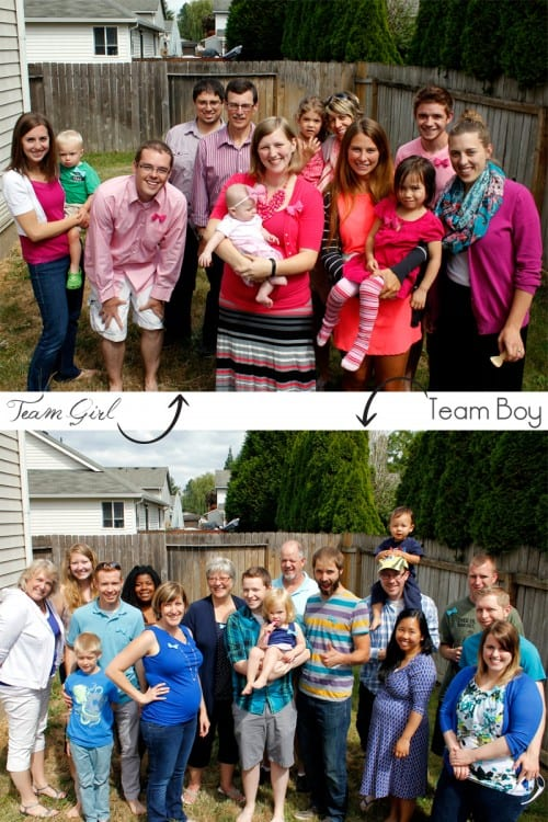 Families divided up in pinks and blues to guess what the sex of new baby will be image.