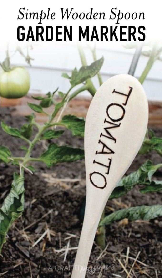 Wooden spoon with the word TOMATO on it in front of tomato plant image.