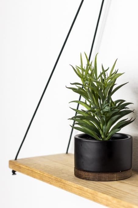 Image of hanging shelf and potted plant